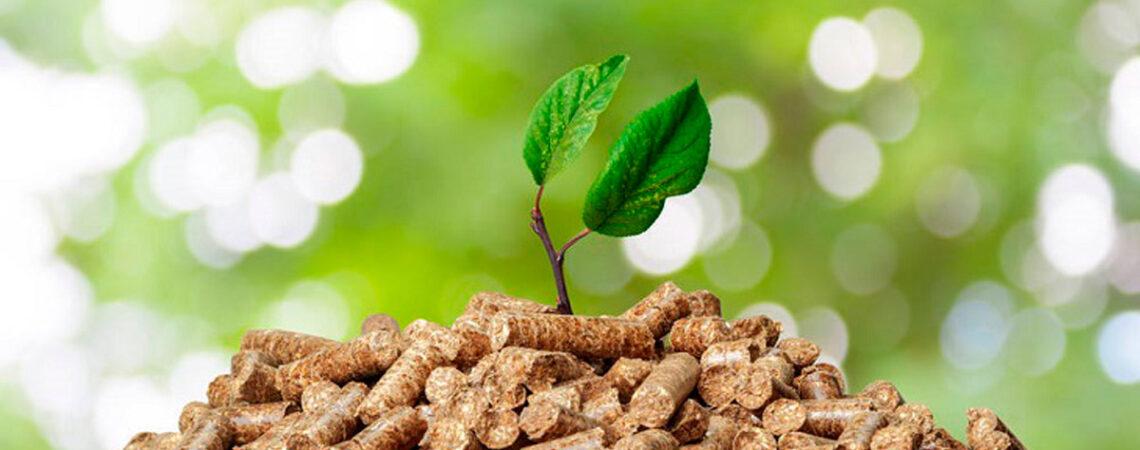 Ahorrar-con-Biomasa