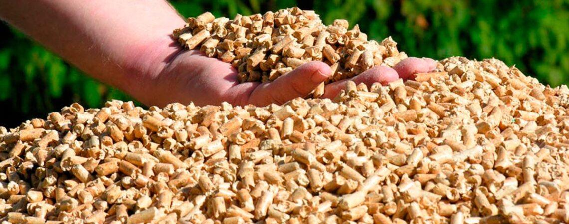 Ayudas a la Biomasas en 2020