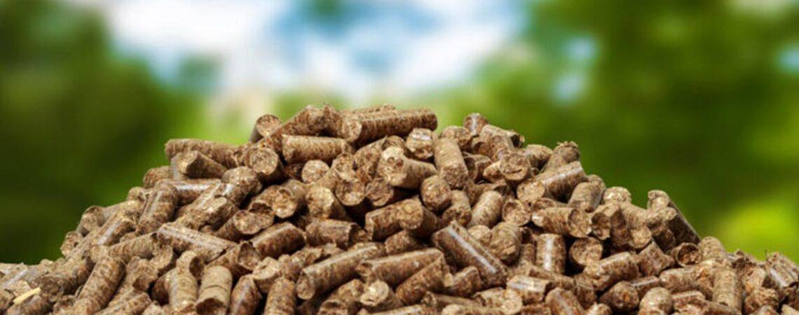 diseño ecologico calderas de biomasa
