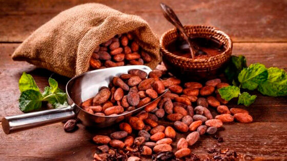 combustible cacao