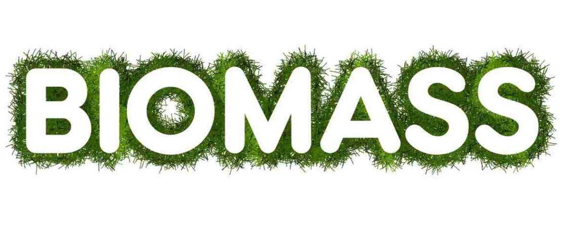 Calefaccion Biomasa